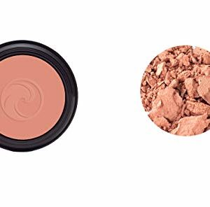 Gabriel Cosmetics, Blush Petal, 0.1 Ounce