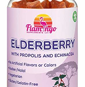 Elderberry Gummies (200 mg) for Kids and Adults Plus Vitamin C, Propolis, Echinacea. Kosher and Halal - Sambucus Black Elder Immune Support Supplement | Raspberry Flavor. 60 Count