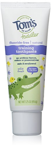 Tom's Of Maine Natural Toddler Training Fluoride Free Toothpaste Mild Fruit, 1.75 Ounce