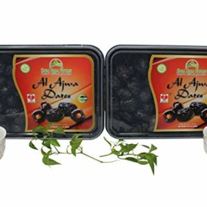 2 Pack of Al AJWA Dates, No 1 Quality Dates Imported from Saudi Arabia 2X800g