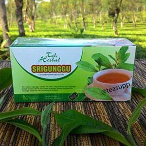 2 x 20 TeaBags Clerodendron Serratum Beetle Killer Pure Herbal Halal Tea