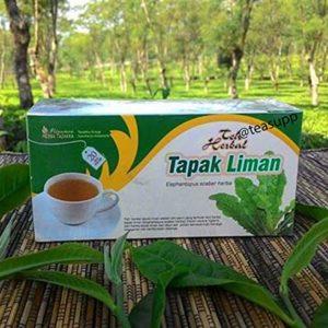 2 x 20 TeaBags Elephantopus Scaber Elephants Foot Pure Herbal Halal Tea
