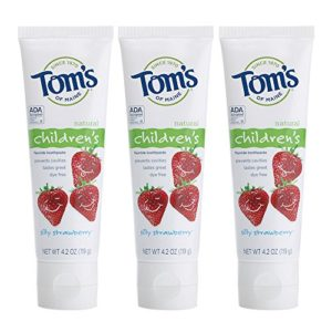 Tom's of Maine Anticavity Fluoride Children's Toothpaste, Kids Toothpaste, Toms Toothpaste, Silly Strawberry, 4.2 Ounce, 3-Pack
