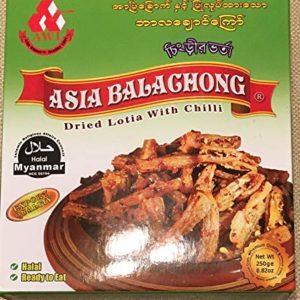 Asia Lotia Balachong (HALAL) အာျဗဲေျခာက္ဘာလေခ်ာင္ေႀကာ္