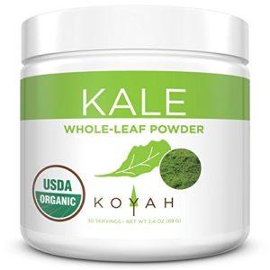 KOYAH - Organic Freeze-dried Kale Powder (Equivalent to 30 Cups Fresh): USA Grown, Whole-Leaf Powder