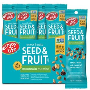 Enjoy Life Seed & Fruit Mix, Soy free, Nut free, Gluten free, Dairy free, Non GMO, Vegan, Mountain Mambo, 1.63 Ounce Bags (Pack of 24)