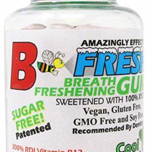 B Fresh Spearmint, Xylitol Gum, Natural Gum, Vegan, B12, No Sugar, 100 Count