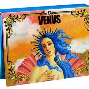 Lime Crime Venus the Grunge Palette